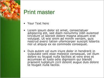 Tomate Modèles des présentations  PowerPoint - Diapositives 24