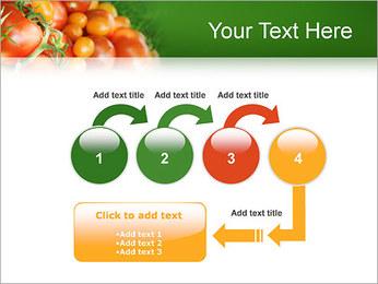 Tomate Modèles des présentations  PowerPoint - Diapositives 4
