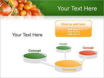 Tomate Modèles des présentations  PowerPoint - Diapositives 9