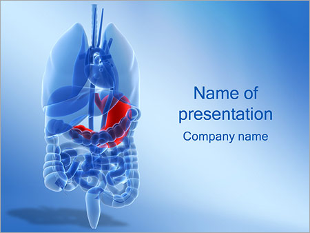 Stomach powerpoint template backgrounds google slides id stomach powerpoint template toneelgroepblik Choice Image