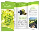 Grapes Les brochures publicitaire