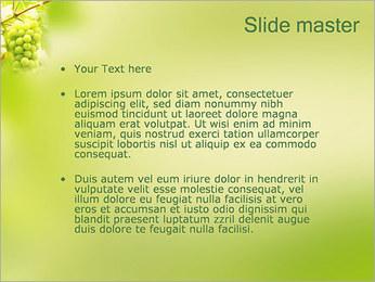 Raisin Modèles des présentations  PowerPoint - Diapositives 2