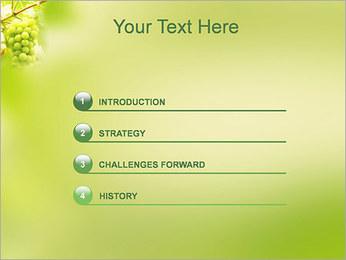 Raisin Modèles des présentations  PowerPoint - Diapositives 3