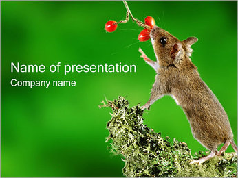 Mouse PowerPoint Template