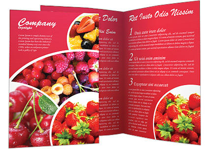 Healthy Food Brochure Template Design ID - Food brochure templates