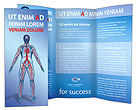 Blood Vessels Brochure Template