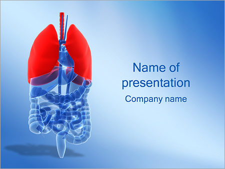 Human biology powerpoint templates backgrounds google slides lungs powerpoint template lungs powerpoint template download toneelgroepblik Images