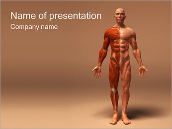 Muscle System PowerPoint Template