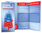 Intestines Brochure Templates