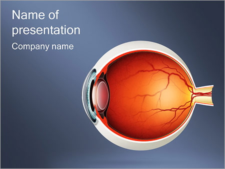 Eye powerpoint template smiletemplates human eye powerpoint template toneelgroepblik Choice Image