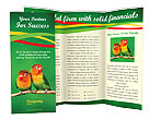 Birds Brochure Template