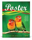 Birds Poster Template