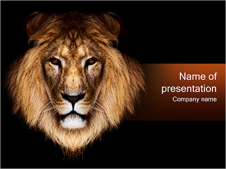 Lion powerpoint template backgrounds id 0000000710 lion powerpoint templates toneelgroepblik Choice Image