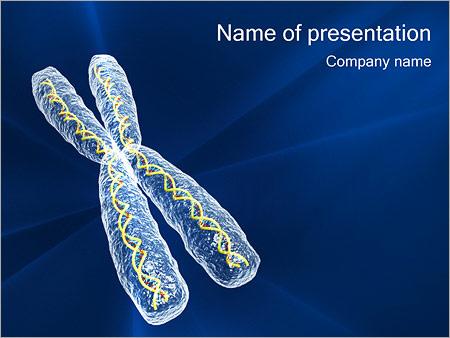Хромосома Шаблоны презентаций PowerPoint