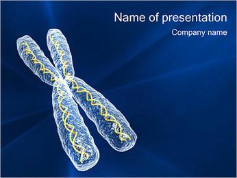 Chromosome Modèles des présentations  PowerPoint - Diapositives 1