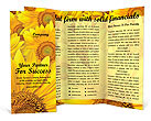 Sunflowers Brochure Templates