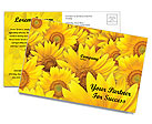 Sunflowers Postcard Template