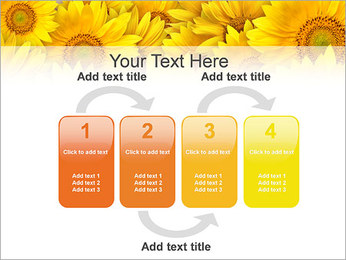 Tournesols Modèles des présentations  PowerPoint - Diapositives 11