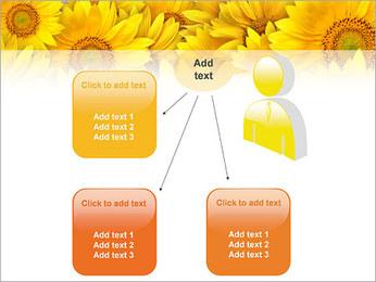 Tournesols Modèles des présentations  PowerPoint - Diapositives 12
