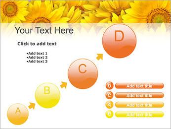 Tournesols Modèles des présentations  PowerPoint - Diapositives 15