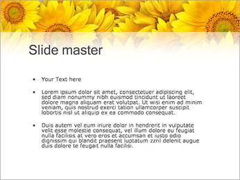 Tournesols Modèles des présentations  PowerPoint - Diapositives 2