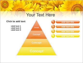 Tournesols Modèles des présentations  PowerPoint - Diapositives 22