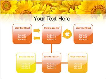 Tournesols Modèles des présentations  PowerPoint - Diapositives 23