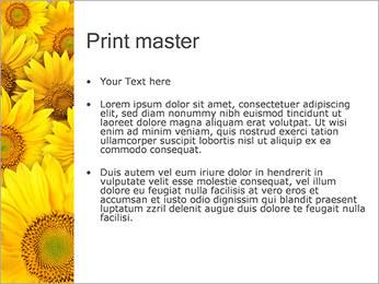 Tournesols Modèles des présentations  PowerPoint - Diapositives 24