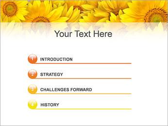 Tournesols Modèles des présentations  PowerPoint - Diapositives 3