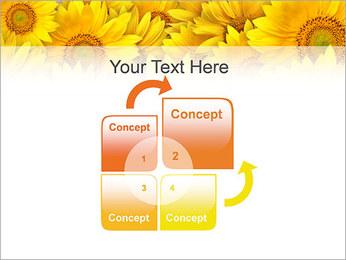 Tournesols Modèles des présentations  PowerPoint - Diapositives 5