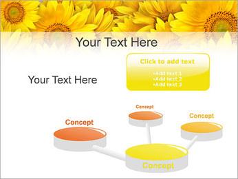 Tournesols Modèles des présentations  PowerPoint - Diapositives 9