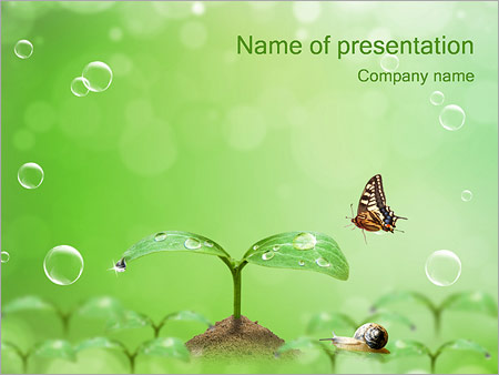 Spring Powerpoint Template  Backgrounds Id