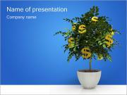 Money Tree PowerPoint Templates