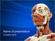 Human Anatomy PowerPoint Templates
