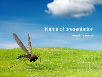 Mosquito PowerPoint Template - Slide 1