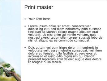 Humano e Natureza Modelos de apresentações PowerPoint