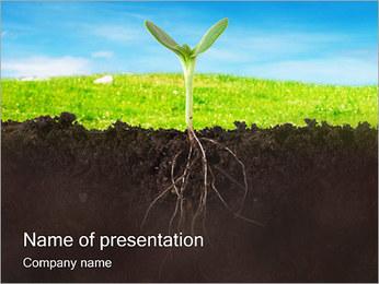 Planta crescente Modelos de apresentações PowerPoint