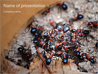 Ants PowerPoint Template
