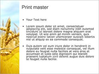 Blé Modèles des présentations  PowerPoint - Diapositives 24