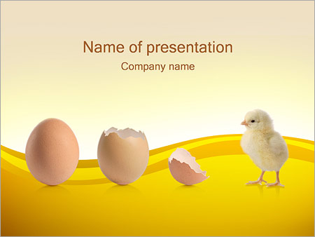 Animals wildlife powerpoint templates backgrounds google slides born chicken and egg powerpoint template toneelgroepblik Image collections