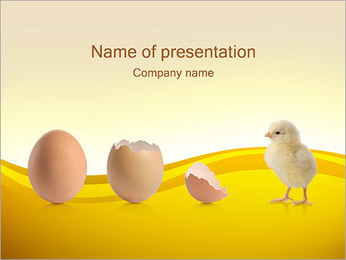 Born Chicken and Egg PowerPoint Template