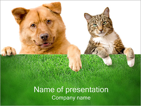 dog & cat powerpoint template & backgrounds id 0000000997, Modern powerpoint