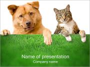 Dog & Cat PowerPoint šablony