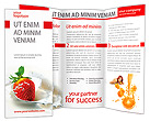 Strawberry with Cream Brochure Templates