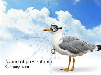 Seagull with Goggles PowerPoint Template