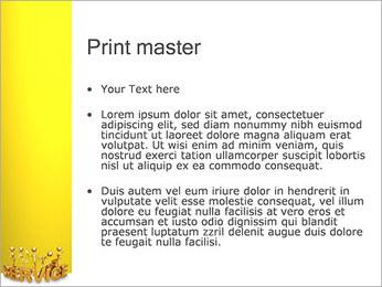 Serviço de Ouro Modelos de apresentações PowerPoint - Slide 24
