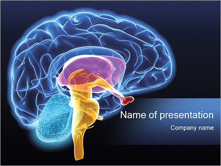 Human Brain Powerpoint Template  Backgrounds Id