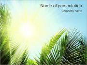 Foglia di palma I pattern delle presentazioni del PowerPoint