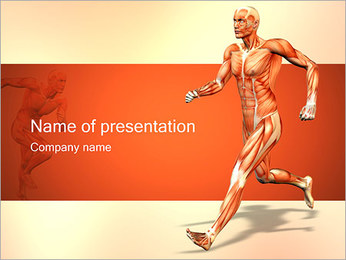Muscular System PowerPoint Template