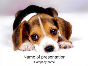 Little Dog PowerPoint Template